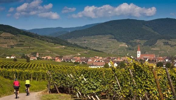 Alsace à vélo - GlobalBiker