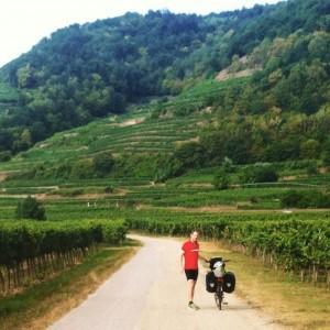 Vgnobles autrichiens - Danube à vélo