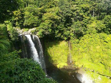 Cascade Japon