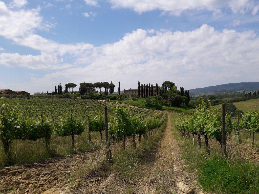 Cyclotourisme Toscane