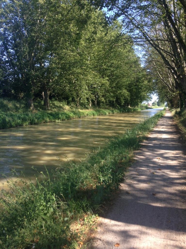 Vélo sur le Canal du midi